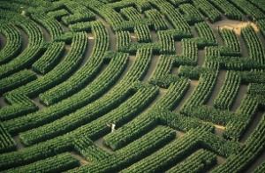 Gyvenimo labirintai